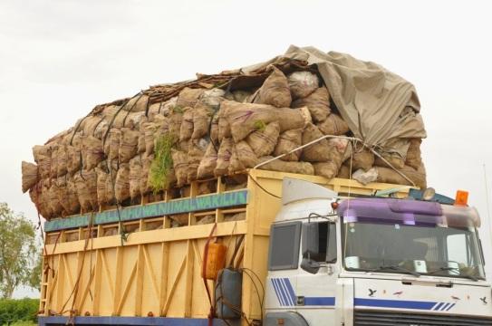 monkey meat being smuggled into Nigeria - ozaragossip.wordpress.com