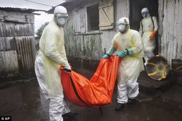 Cybersquatter set to sell Ebola.com domain for $150k | ozara gossip