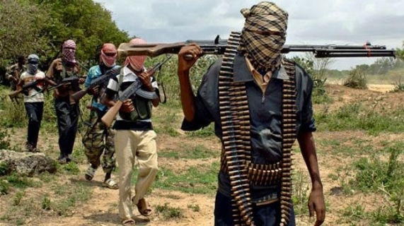 Fight between Cameroon army and Boko Haram | ozara gossip